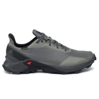 Кроссовки Salomon Alphacross GTX Castor (Gray/Ebony/Black) 4080055